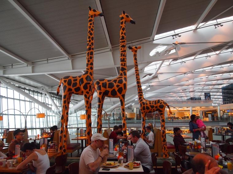 Love giraffes!
