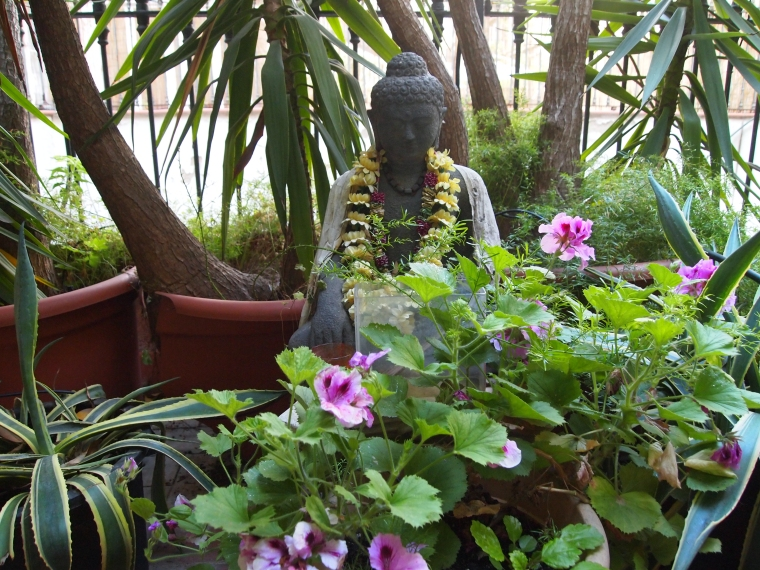 there's a buddha in the garden.  I like him a lot. :-)