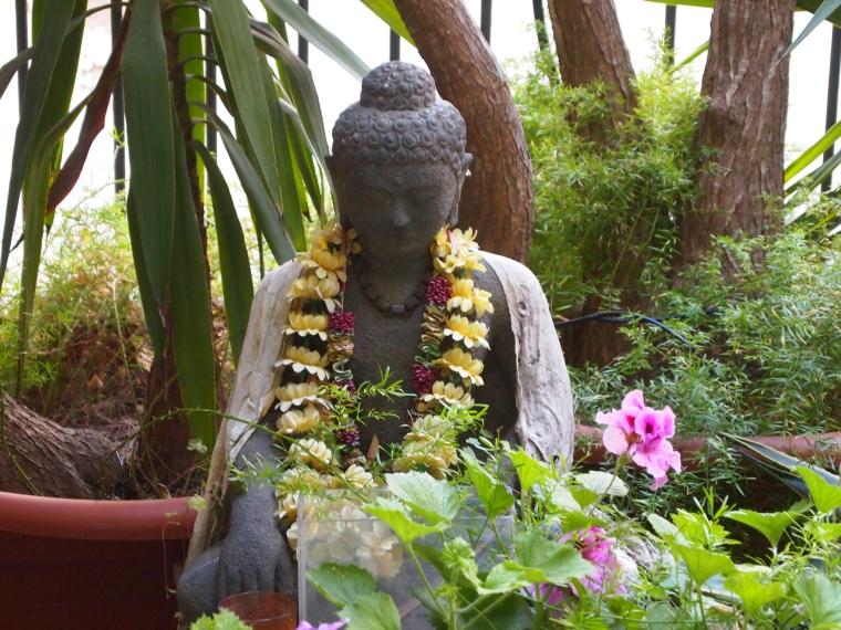 Ohm, Mr. Buddha