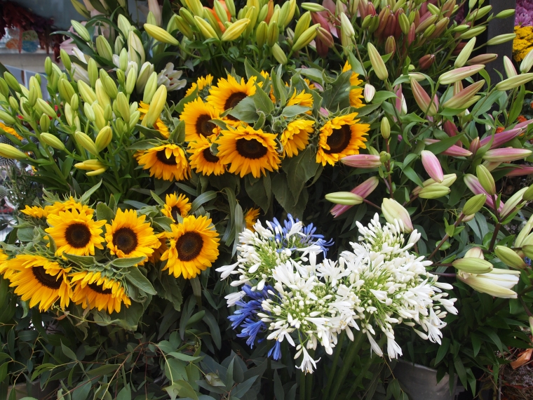 flower stalls on La Rambla