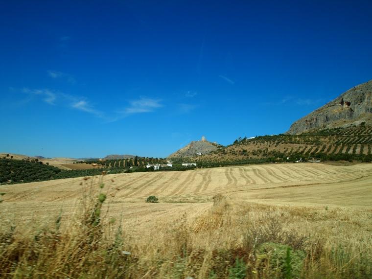 on the way to Castillo de Teba