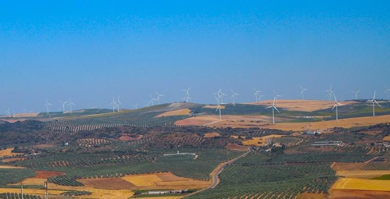 windfarm viewed from Castillo de Teba