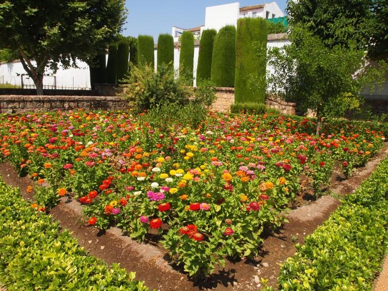 gardens in the Alcázar de los Reyes Cristianos