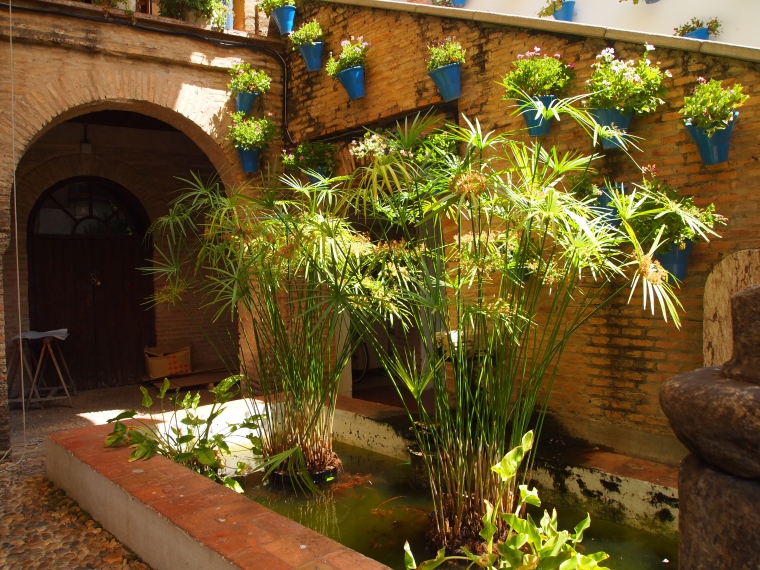 another Cordoba courtyard