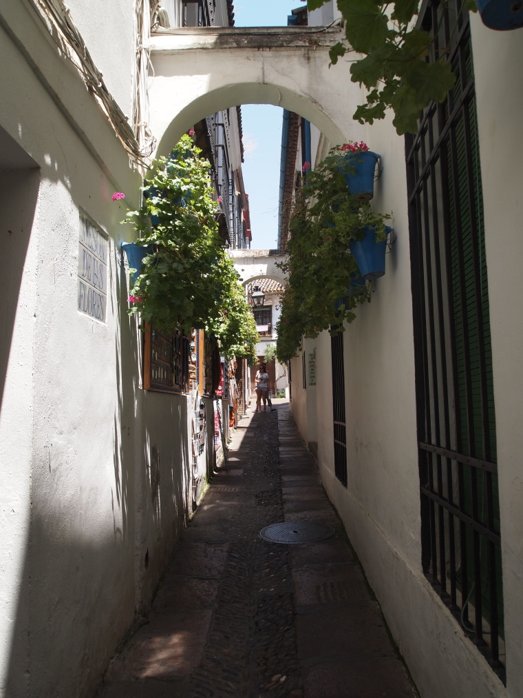 flower-lined alleys of Cordoba