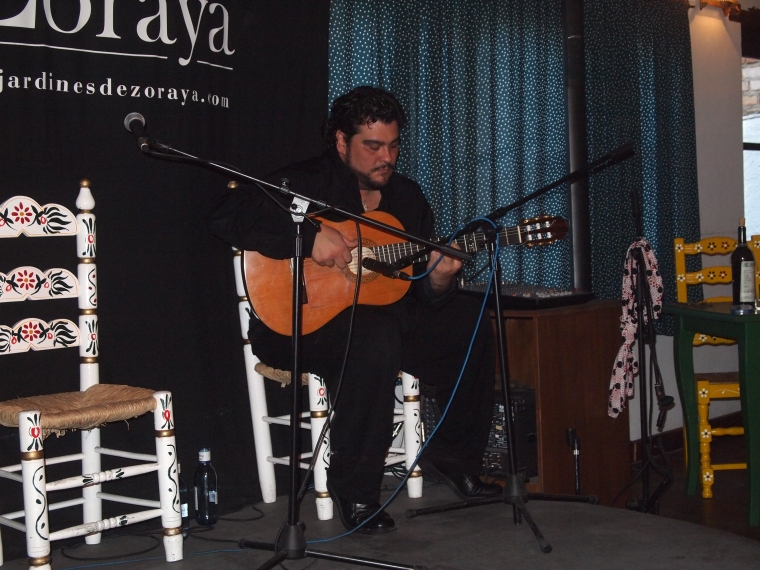 the flamenco guitarist