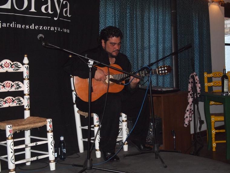 the flamenco guitarist