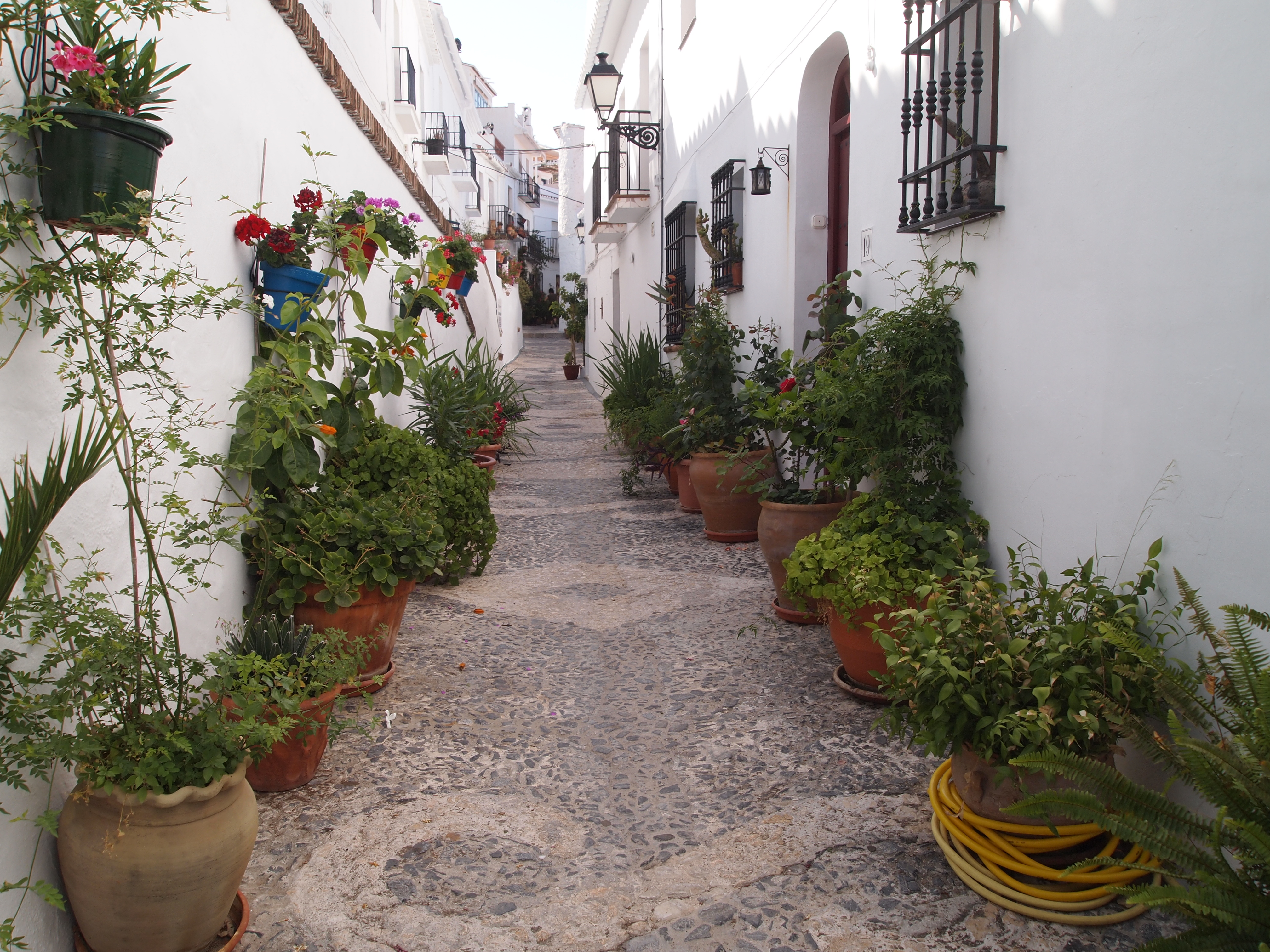 A Morning With Marianne In Frigiliana In Search Of A