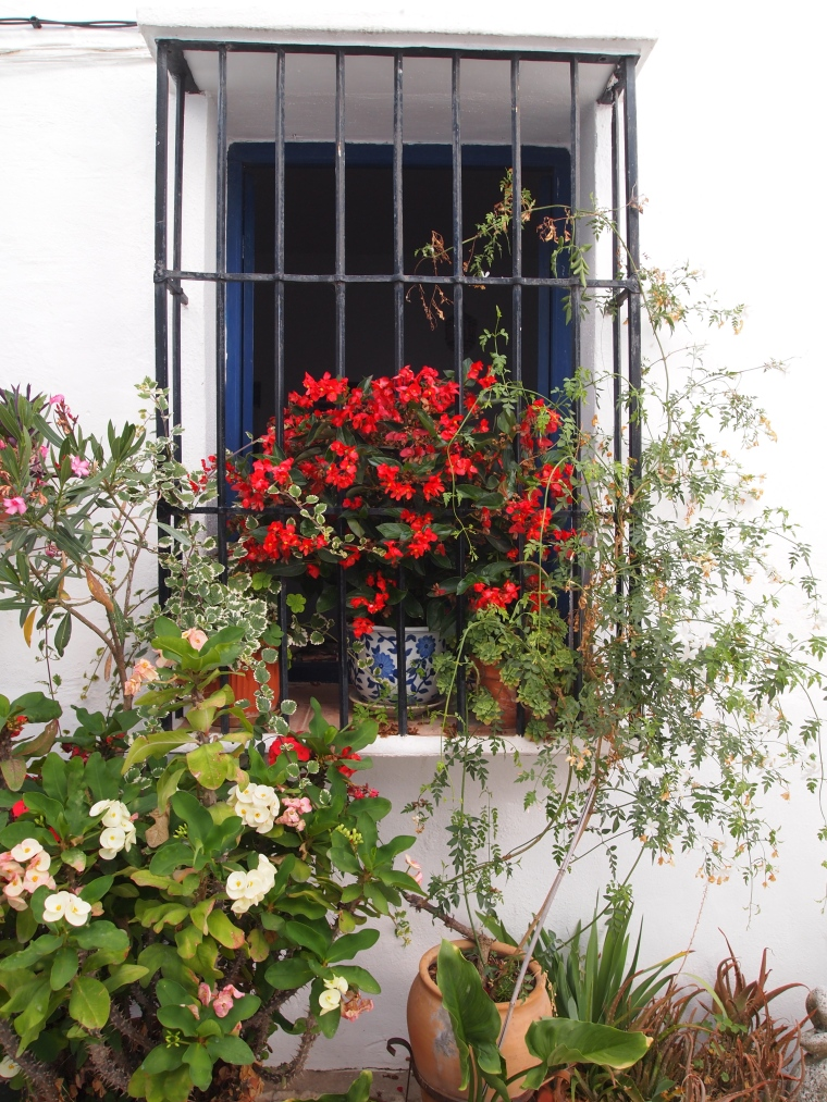 pretty window in Frigiliana