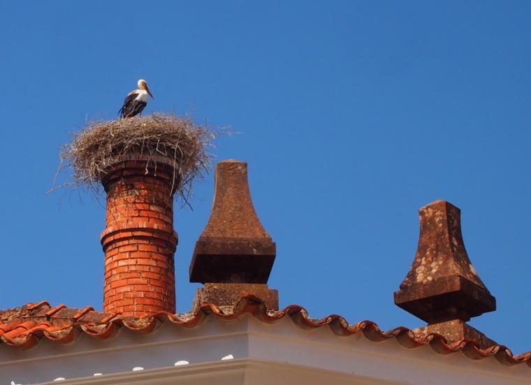 stork's nest on a chimney in Silves