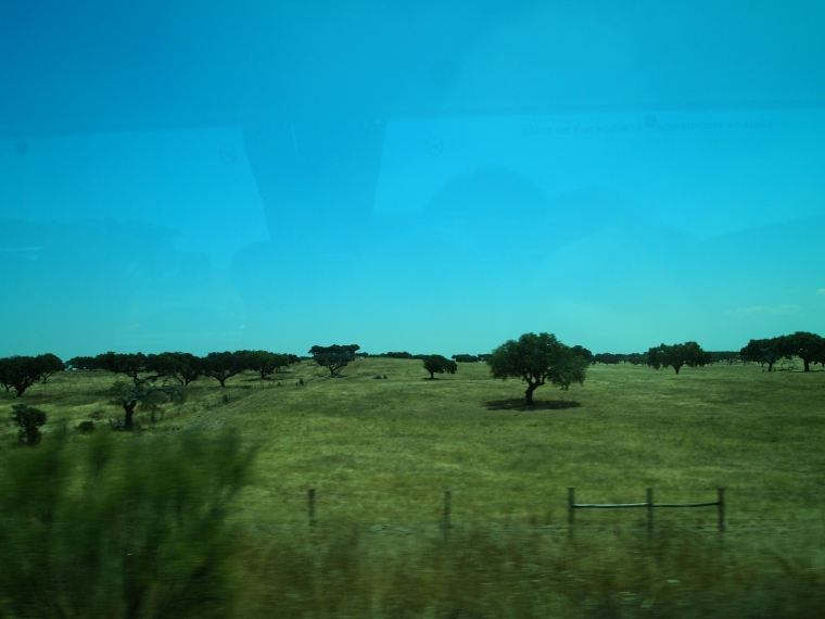views of the Alentejo from the bus window