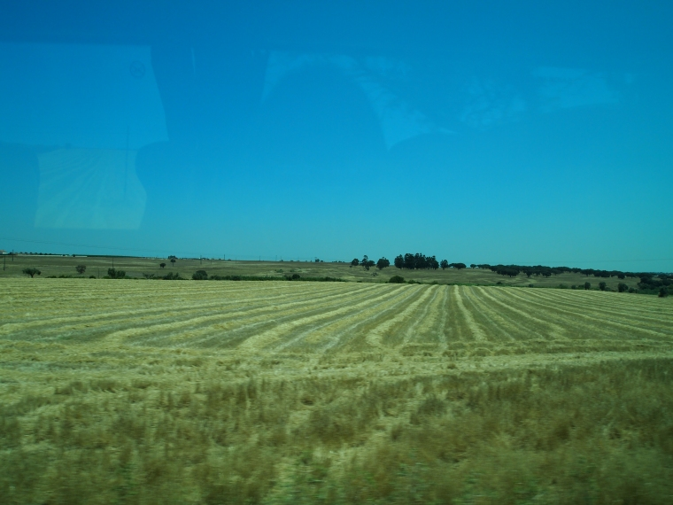 farmland in the Alentejo