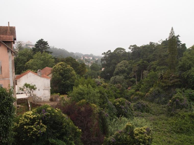 View along Rua Dr. Alfredo Costa