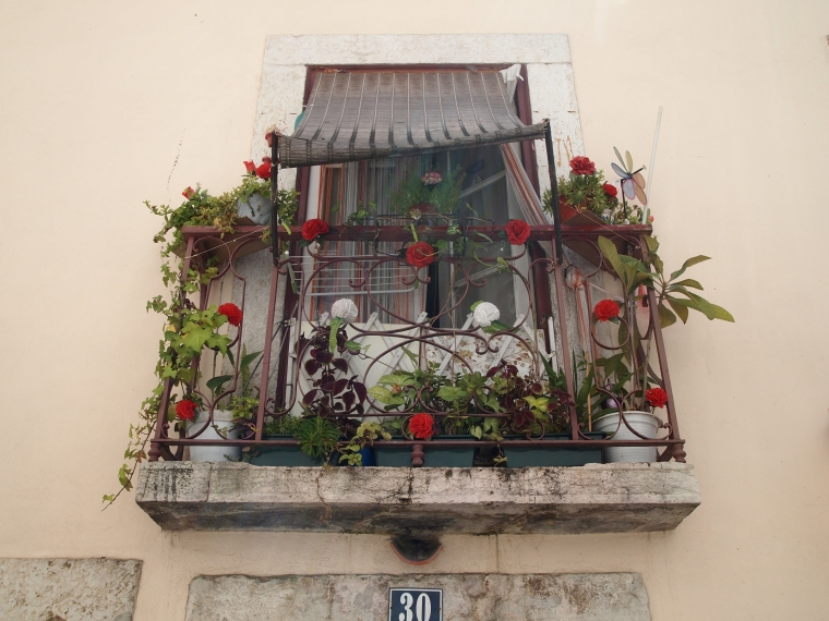 charming window in the the Alfama neighborhood around the Castelo de São Jorge
