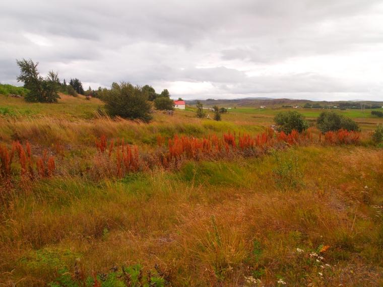 pretty farmstead