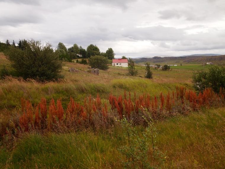 pretty farm along the way
