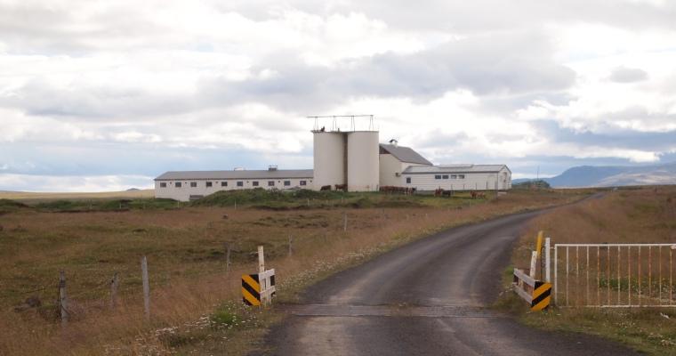 a large farm