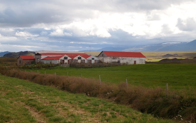 red-roofed farm