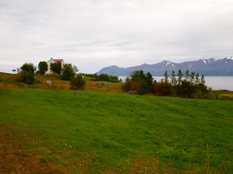 farmland on Tröllaskagi