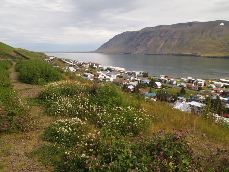 view of Siglufjörður and the fjord