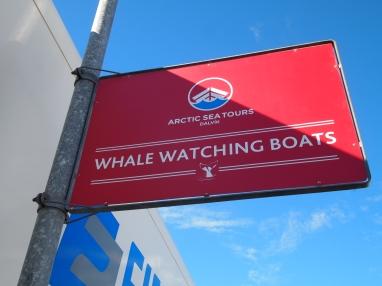 Arctic Sea Tours