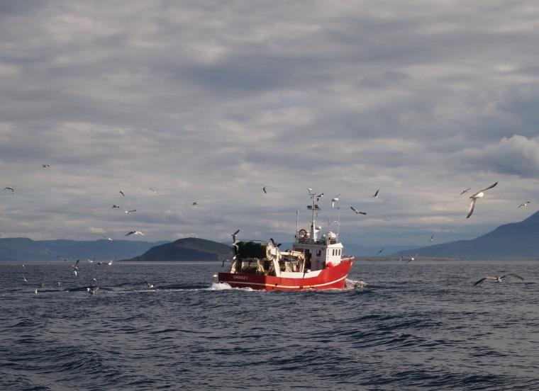 boat on Eyjafjörður