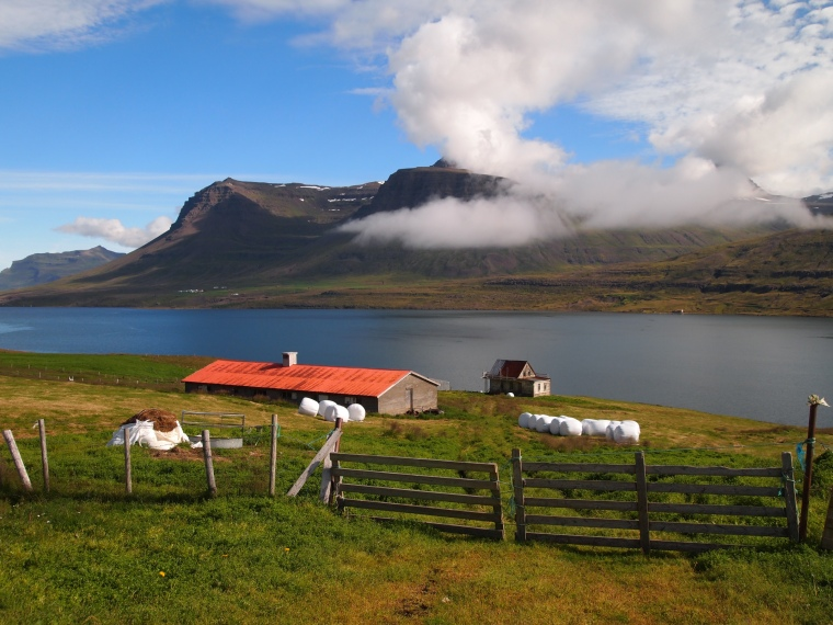 a farm along the fjord