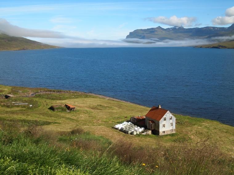 a farm along the fjord