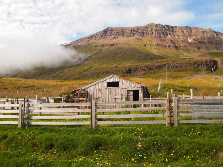 a cute farm on the road north of Seyðisfjörður