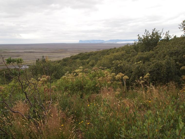 Vatnajökull National Park with Skeiðarársandur in the background