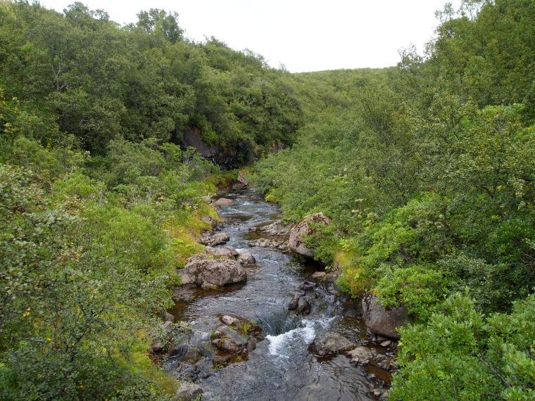 the river leading to Skeiðarársandur