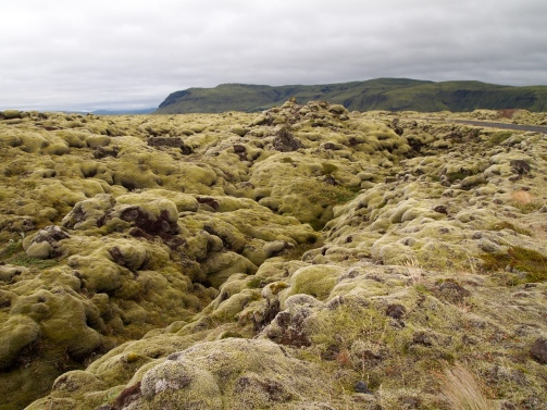 mossy stones east of Vik