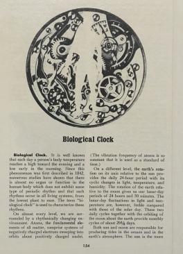 Biological Clock - encyclopedic wallpaper