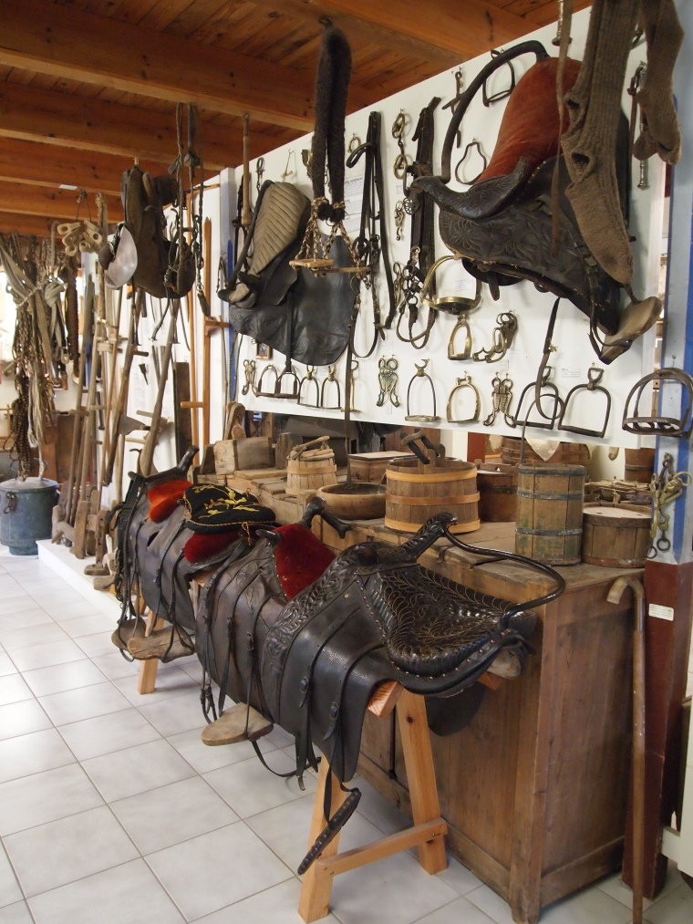 saddle display