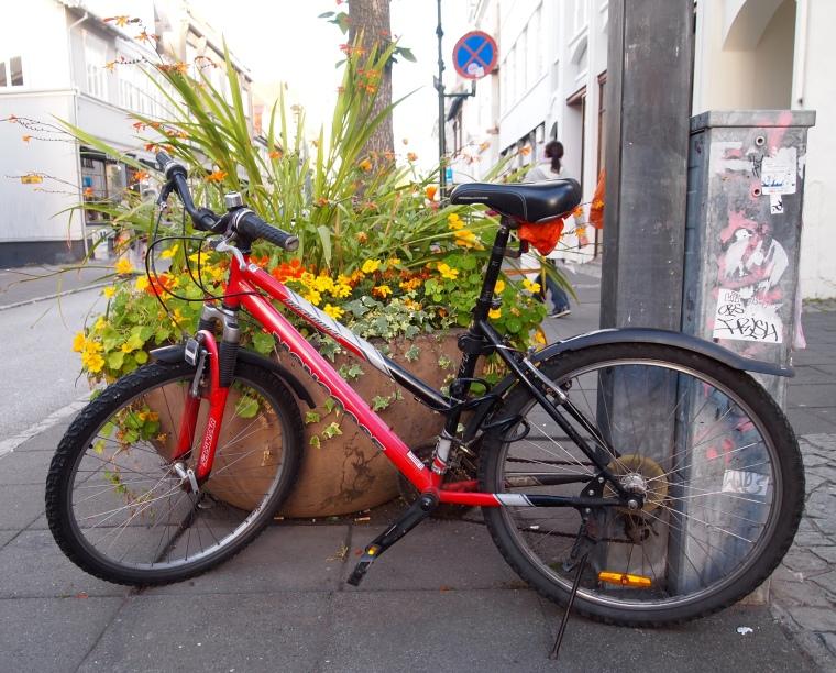 bicycle in Reykjavik