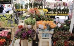 flowers at Naschmarkt