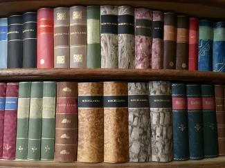 bookshelf Strahov Library
